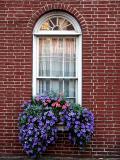 Summer Window ~ August 16th