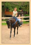 Horses 29