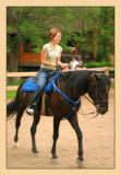 Horses 30