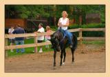 Horses 32