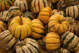 Pumpkinville 36