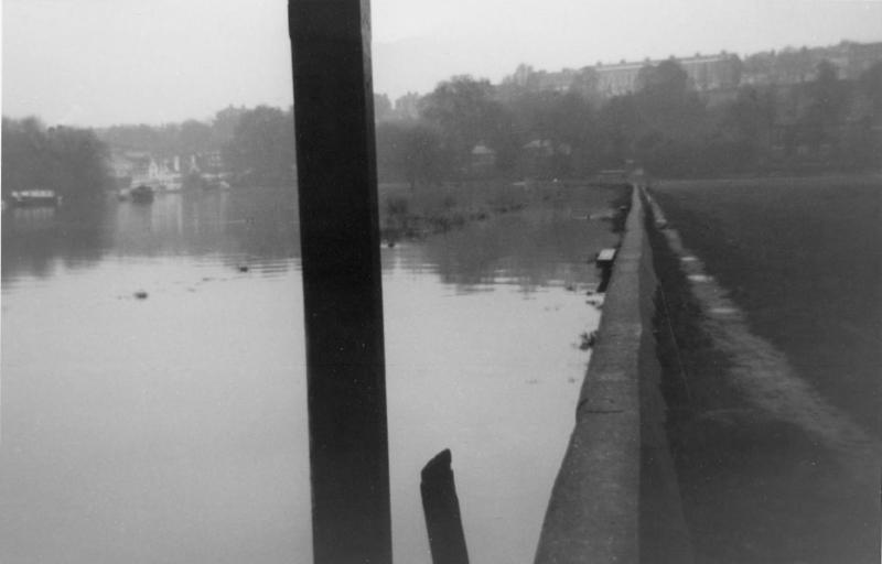 Towpath beside Petersham Farm, Richmond upon Thames