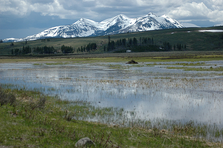 Yellowstone with Beaver Dam