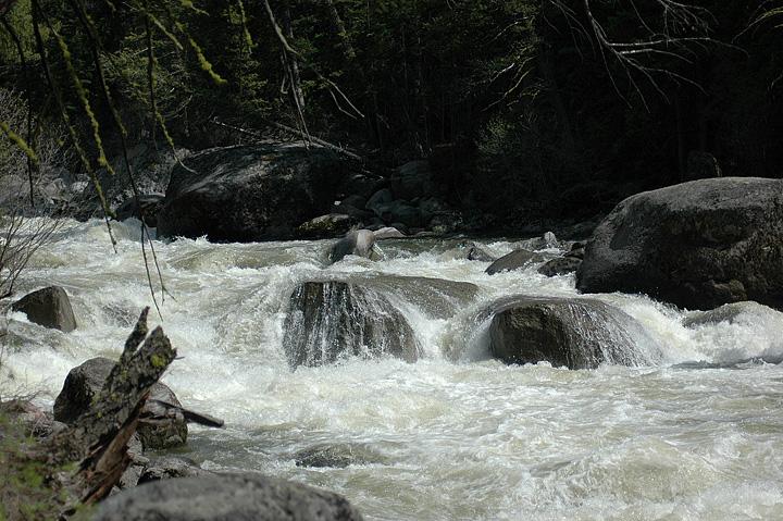 Stream in Grand Tetons