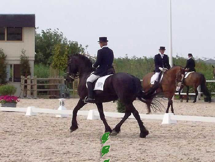 Beike at an event in Holland