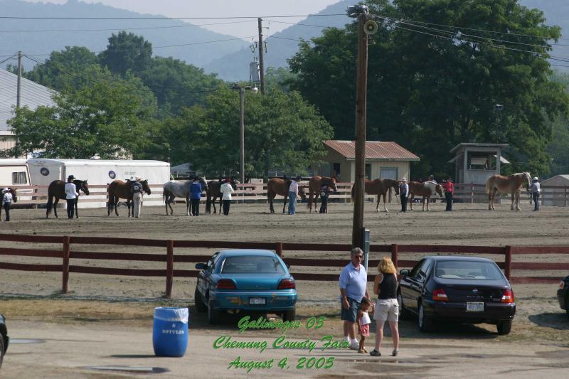 County-Fair-Thursday_412.jpg