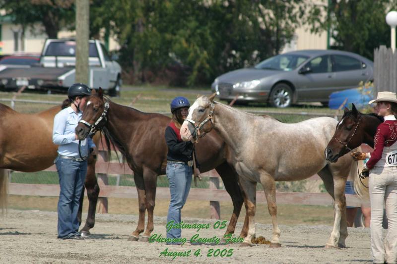 County-Fair-Thursday_442.jpg