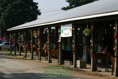 County-Fair-Thursday_402.jpg