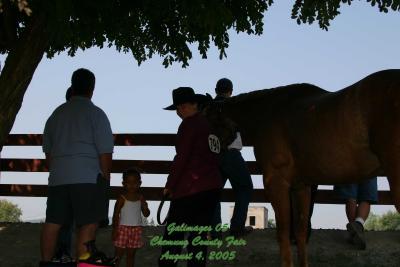 County-Fair-Thursday_424.jpg