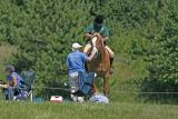 Fence-Judge-&-Outrider.jpg