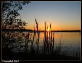 Darbone SunSet October 23 *