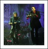 James Brown, Byron Bay Bluesfest, 2004