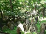 Cemetary in Josefov - the old Jewish quarter of Prague