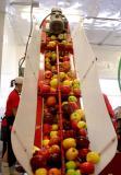 Apple Slaughter House