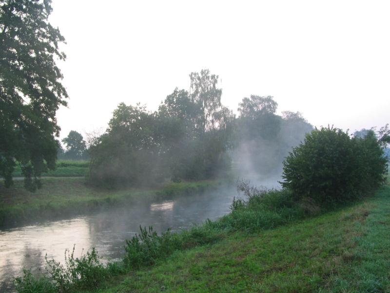 Autumn fog before sunrise