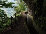 Levadas of Madeira