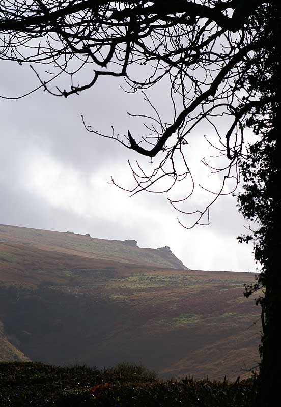 Dartmoor Autumn 1