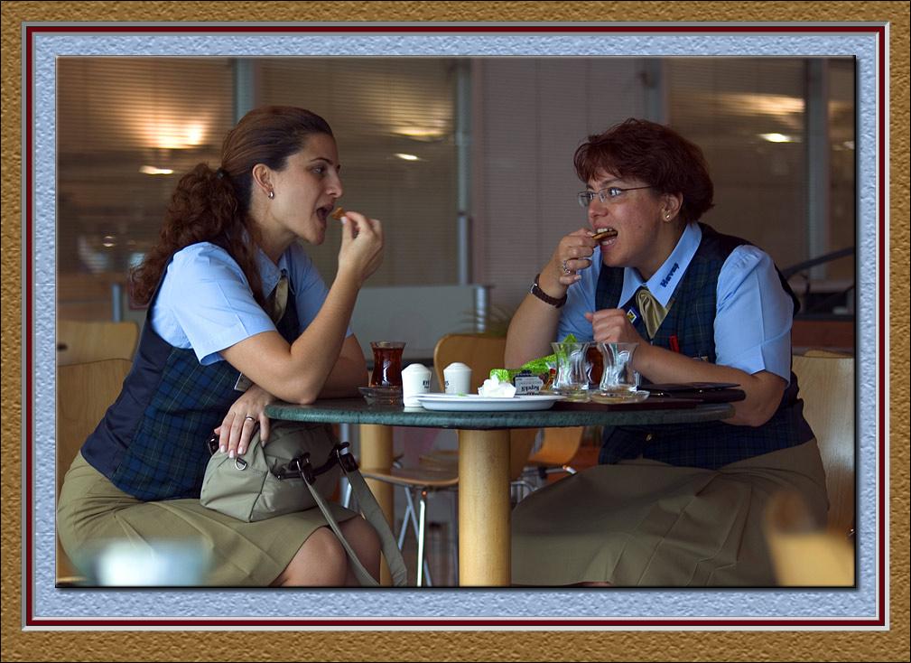 Stewardess chat
