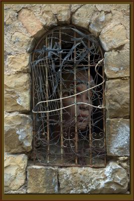 Imprisoned in her beauty