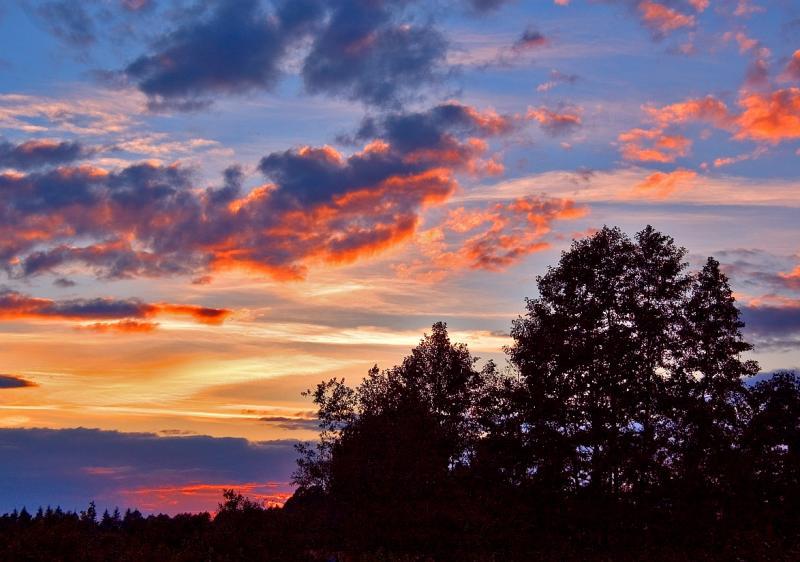 Roztocze Sunset