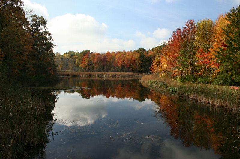 Colonie Town Park Pond