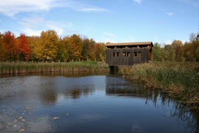 Colonie Town Park  Covered Bridge in Autumn