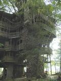 TreeHse3.3044