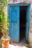 Blue door and plant