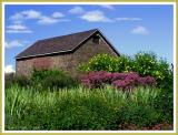 Summer on LindenHill Farm II