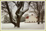Winter Along Holicong