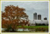 Reflections of a Farm