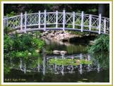 Lilly Pond Bridge
