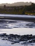 low tide 1.jpg