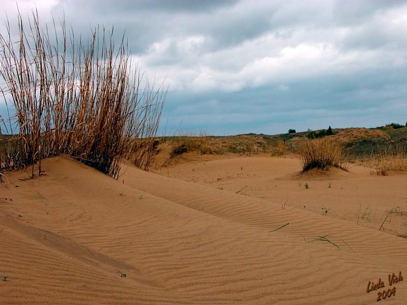 Carberry Desert, Manitoba