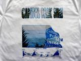 Capitol Peak 50M t-shirt