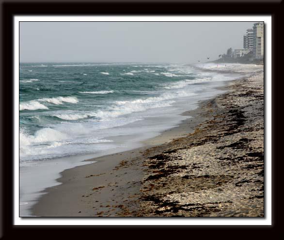 Juno Beach 147