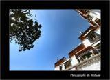 at_drepung_monastery_