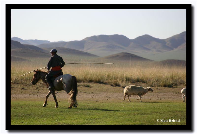 Sheep Hearder, Tov Aimag