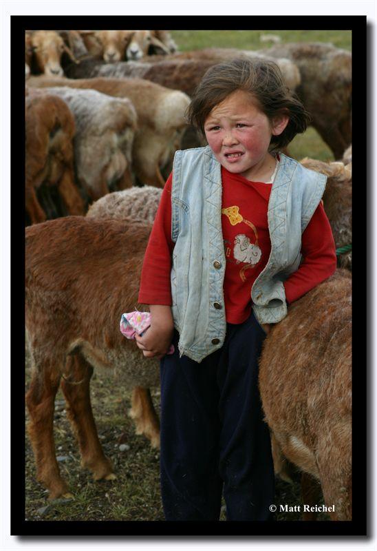 With the Sheep, Bayan-Olgii Aimag