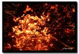 Burning Coals, Altai Tavanbogd National Park