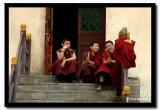 Novice Mongolian Monks Sit on the Monastery Steps, Ulaanbaatar-copy.jpg