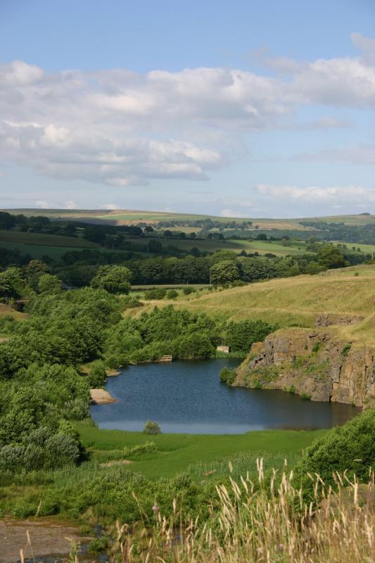 Harehope quarry pond.jpg