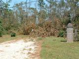 Katrina 210.jpg