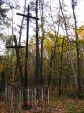 Two Crosses In The Woods