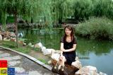 Dalian 大連 - 勞動公園 Labour Park - Xiaoyen