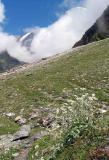 High mountains.jpg