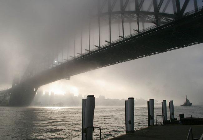 Sydney Fog 9