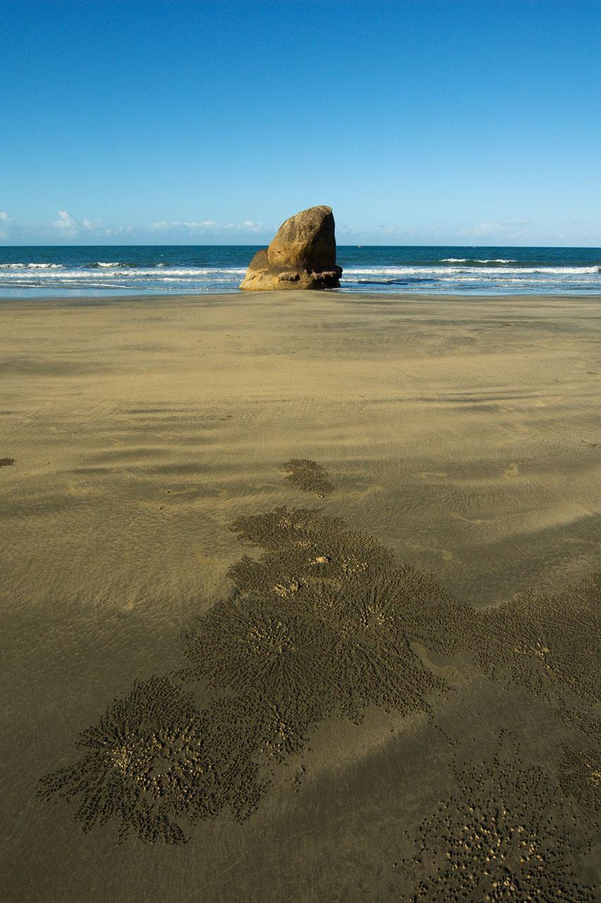 Hinchinbrook Island rock in water plus crab tracks 12 by 18 _DSC2625