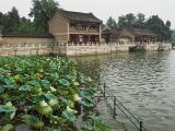 Summer Palace3