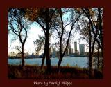 Fall in River City.JPG